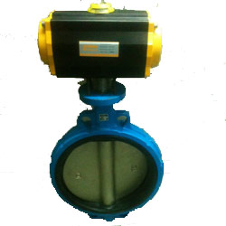 Rotary Actuated Control Valve
